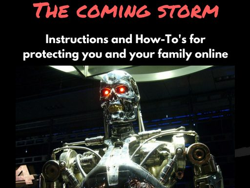 Online Security And The Coming Storm (eBook – Computer Educational)
